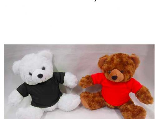 FG282 *23cm Teddy Bear