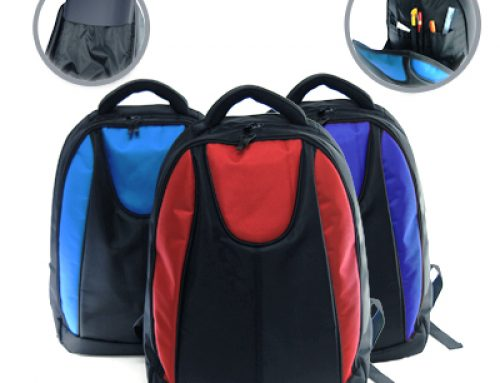 THB1006 Harz Laptop Haversack